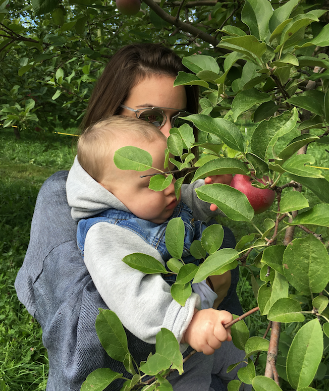 Le Verger de Hudson,organic, apple picking, petting zoo,organic apple juice, honey, montreal grandma, grandchildren, Sunday activity, Rhonda Massad